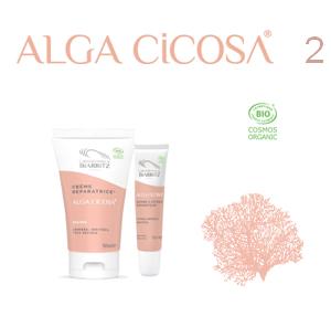 Reparativni paket Alga Cicosa – Za oporavak ruku i usana